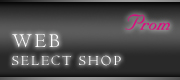 WEB SELECT SHOP